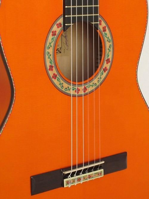 ¿ Qué debo tener en cuenta antes de comprar una guitarra ?